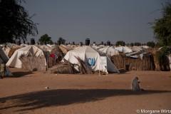 Près de 200 000 personnes fuyant Boko Haram sont installées dans la région de Diffa. Les camps sont partout.