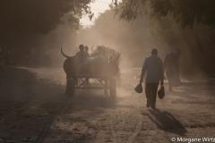 L'usage de carburant et de certains engrais, utilisés par le groupe djihadiste pour fabriquer des bombes, est interdit par le gouvernement sans autorisation spécifique. De nombreux agriculteurs ont aussi perdu l'accès à leur champ, situés dans des zones où s'opère ponctuellement le combat entre les forces de sécurité et Boko Haram. La circulation dans la région est aussi devenue plus complexe du fait de l'interdiction par l'État de circuler à moto.