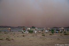 Ingal, à l'aube d'une tempête de sable, Niger