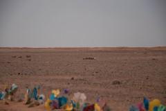 Le mur de sable qui divise le Sahara occidental fait 2720 km de long. Sa construction a été achevée en 1980. En construisant cette frontière, le Maroc a voulu délimiter ses territoires. Le mur est protégé par des bases militaires. C'est aussi l'un des territoires les plus minés au monde. Certaines mines ont été identifiées et signalées à l'aide de cercles de pierre. En face des Marocains, des activistes ont déposé une fleur par mine antipersonnel.