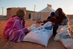 Chaque habitant des camps bénéficie de 17 kg de nourriture par mois. Les bailleurs de fonds fournissent des quantités suffisantes pour 125 000 personnes. Or, 173 600 réfugiés vivent ici. Le Croissant rouge fait confiance à l'esprit communautaire des Sahraouis pour qu'ils partagent eux-mêmes la nourriture, en évaluant les besoins de chacun.