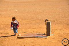 Sahara, 2012.